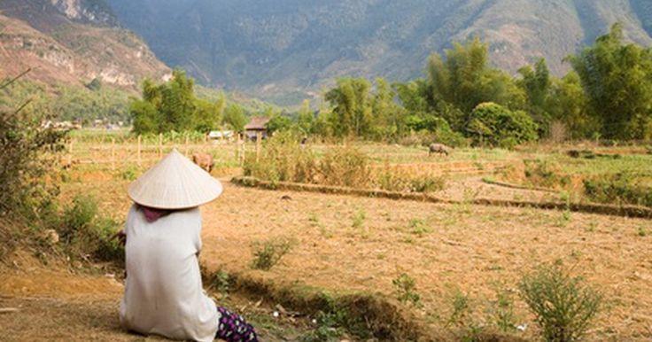 """Cómo decir hola en vietnamita . Aprender unas cuantas palabras de un idioma local puede hacer una gran diferencia al viajar. La gente está más dispuesta a ayudar y a actuar amistosa si te tomas la molestia de aprender simples saludos, como """"hola"""". En Vietnam, la gente tiende a usar diferentes expresiones para decir hola, dependiendo de la situación, el tiempo del día y de la ..."""