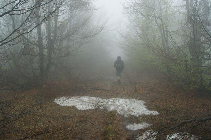 Bieszczady, trail to Kremenaros along polish/slovakian border