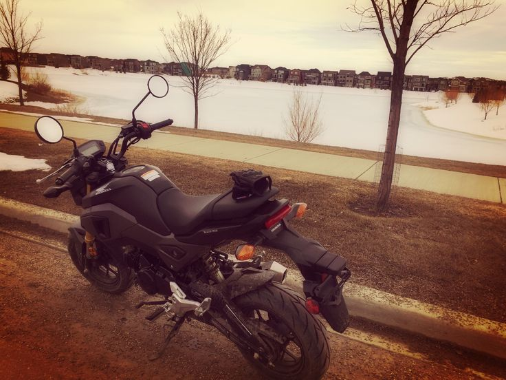 Honda grom Morning ride, cool in every sense one can think of!! #hondagrom #msx125