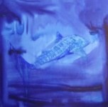 Whale Shark 2  91cm x 91cm  mixed media on canvas  $1,500.00