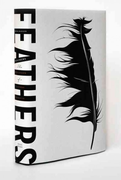 love feathers...especially well designed, with beautiful positive/negative space