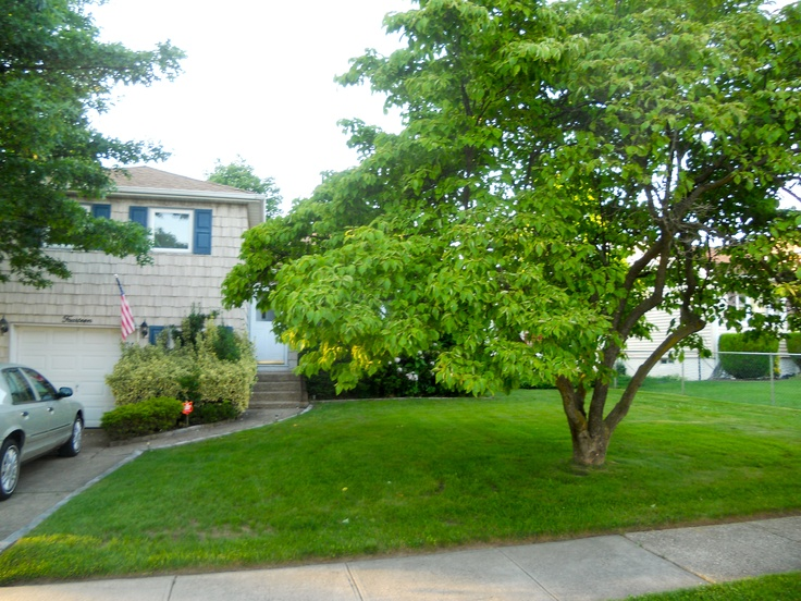 Home for sale Massapequa, NY $309000