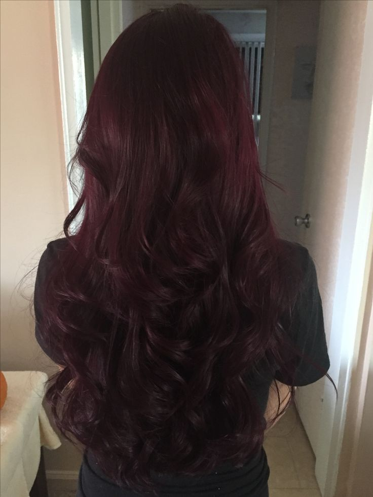 Gorgeous wine/eggplant hair