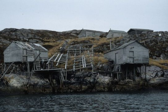 Little Fogo Islands