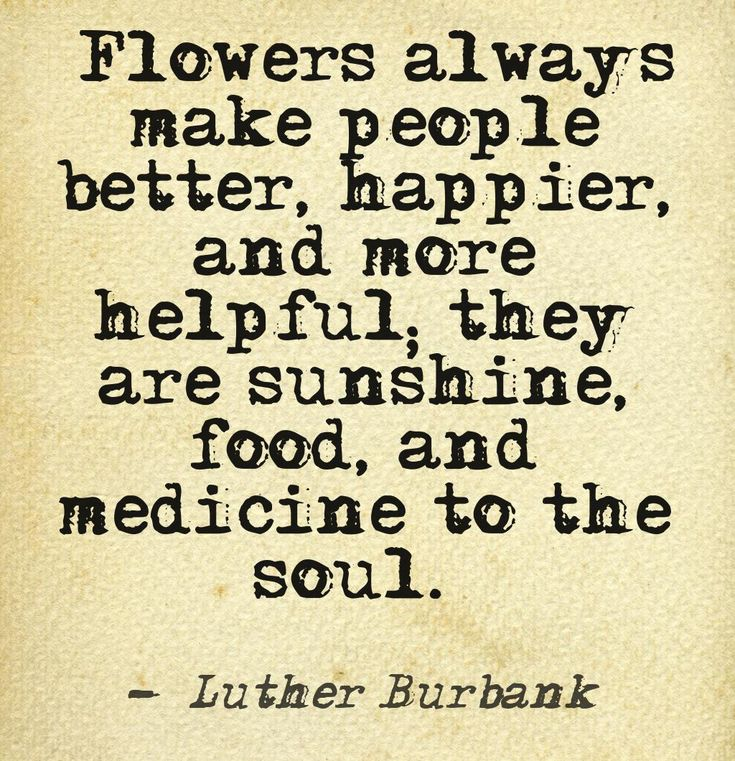 """""""Flowers always make people better, happier, and more helpful; they are sunshine, food, and medicine to the soul."""""""