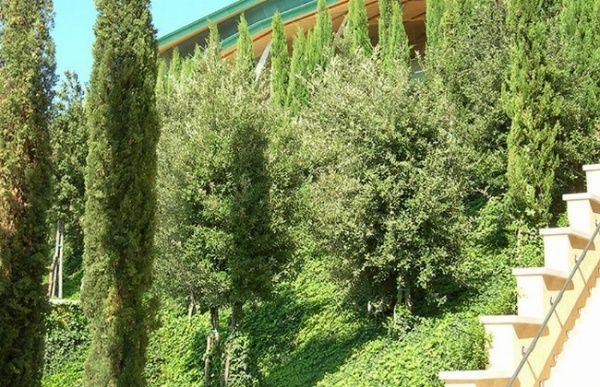Chiesa di Padre Pio a San Giovanni Rotondo - ecco i #giardini#pensili intensivi realizzato con #Perliroof - www.perligarden.com