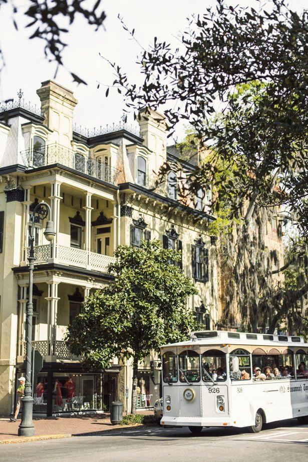 Guide to Savannah, Georgia | Ann Street Studio
