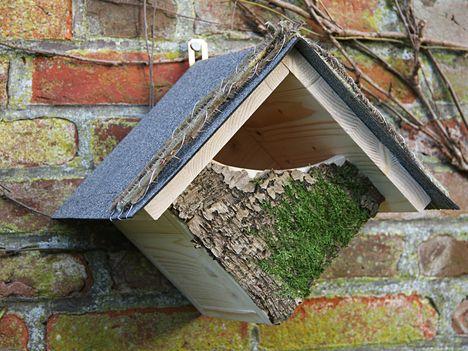 Vogelhaus für Rotkehlchen Futter Haus Birdfeeder                                                                                                                                                      Mehr