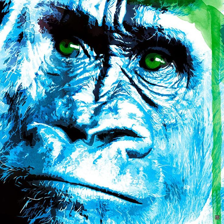 Rilla in the Mist - Stretched Canvas Artwork & Ready to Hang | Mokosozo