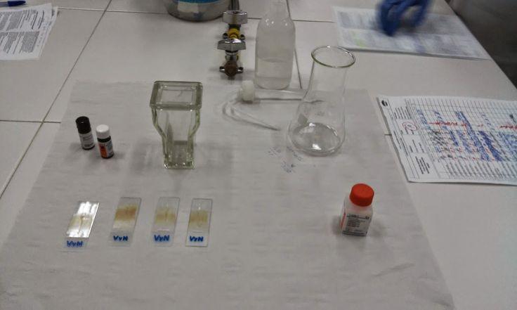 Este es el material que vamos a utilizar en la práctica.