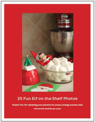 Elf on the Shelf Book of Poses, Our poor Elf was out of hiding places way too soon, these ideas will help!
