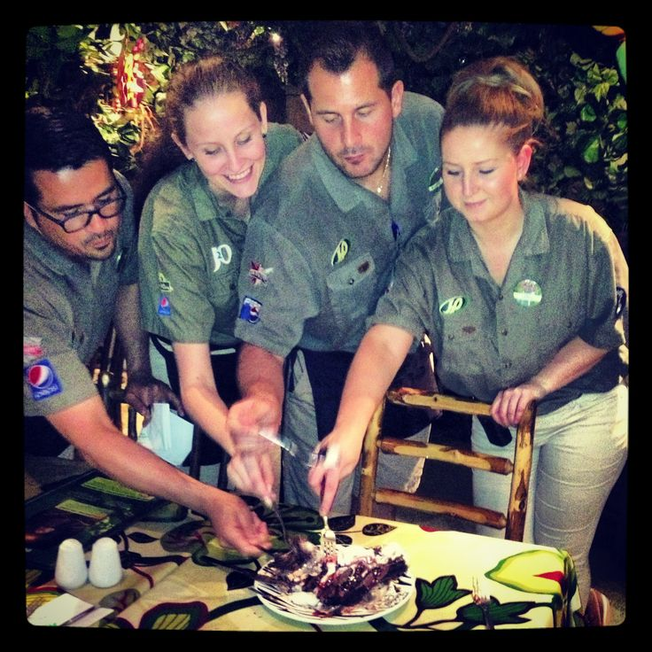 From meeting, greeting, serving to tasting ... our staff are at the heart of our business and guest experience.  Email your CV to jobs@therainforestcafe.co.uk