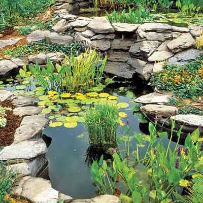 Everything you need to know to build the perfect backyard for Cool backyard ponds