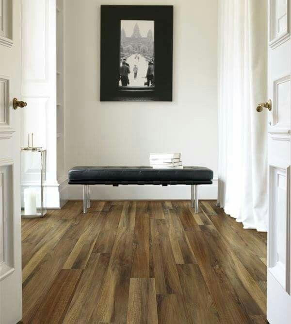 Best Shaw Carpet For Family Room
