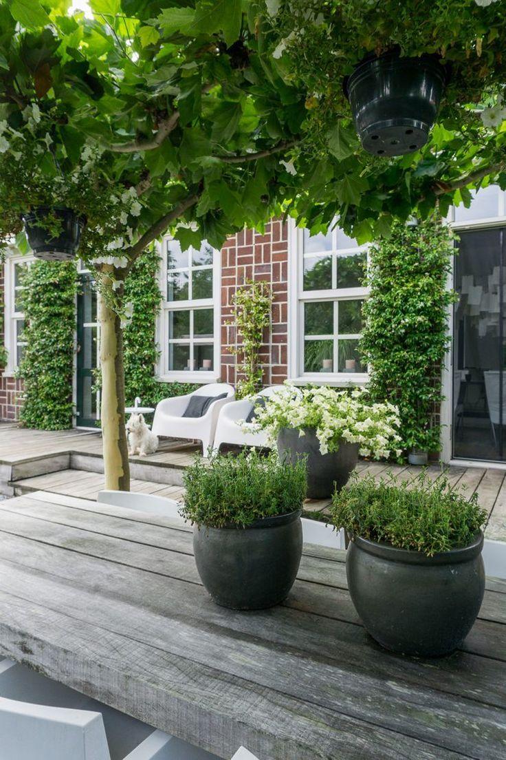 Annemieke toont haar tuin: modern, minimalistisch en skandinavisch