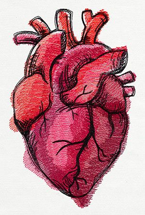Painted Anatomical Heart | Urban Threads: Unique and Awesome Embroidery Designs