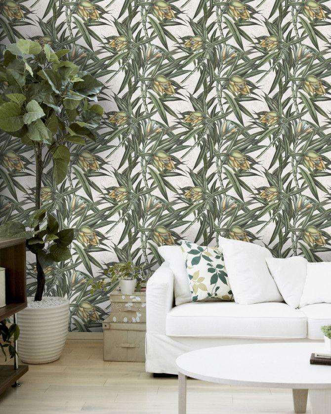 EXOTIC FRUIT II Premium Wallpaper