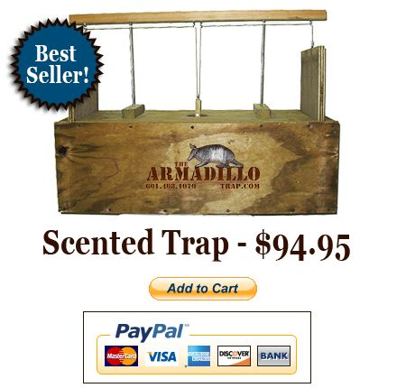 Buy The Armadillo Trap - The Best Trap for Armadillo Control  and Removal