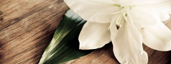 Dies ist eine Gedenkseite auf Gedenkseiten.de  für Niklas Pöhler, Geboren am ,  Gestorben am 13.05.2016