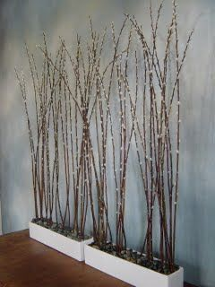 pussy willow. Branches for escort card display wall. Rustic modern.  -- for that weird table at the entrance?