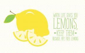 Когда жизнь подкидывает лимон - радуйся бесплатным лимонам