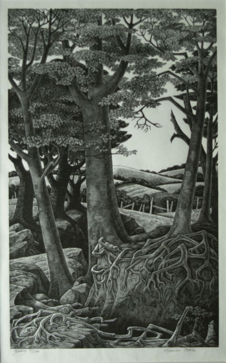 "Monica Poole wood engraving, ""Gully"""