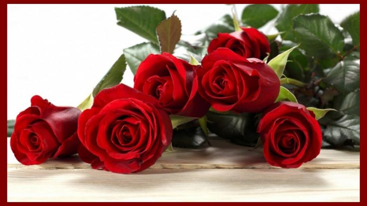 1000 images about happy valentines day flower wallpapers - Valentine s day flower wallpaper ...