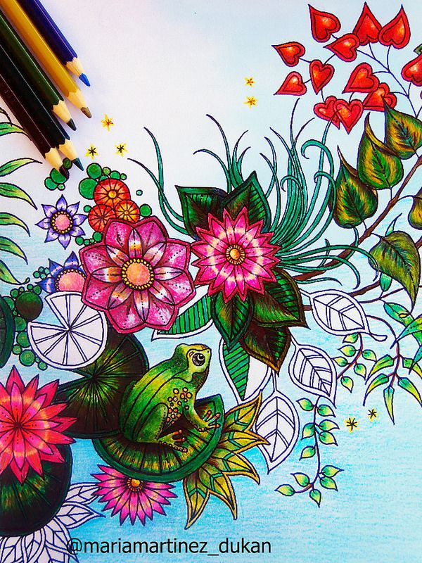 Estanque rana, Jardín secreto. Jardin Secreto libro Johanna Basford (Maria Martinez Dukan)
