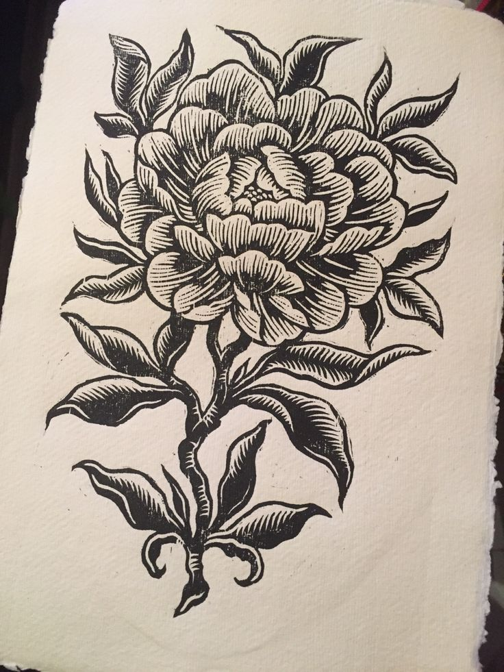 Lacey Law ~ Peony ll ~  Woodblock Print