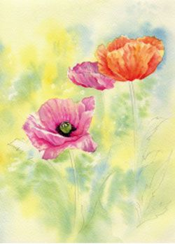 Learn to paint vibrant poppies in watercolour