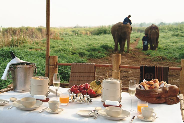 At @Four Seasons Tented Camp Golden Triangle, surprise breakfast guests are always a possibility. #FSResorts
