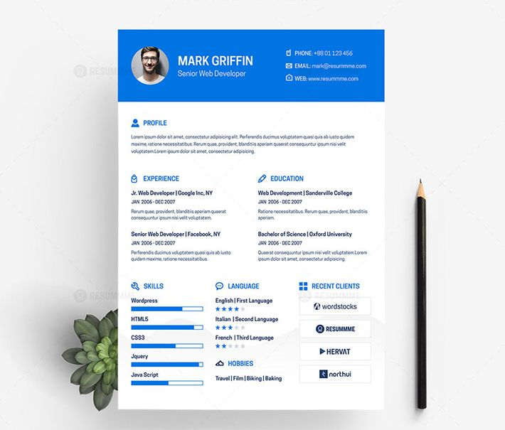 Freebie Creative Web Developer Resume Cv Template Design Web