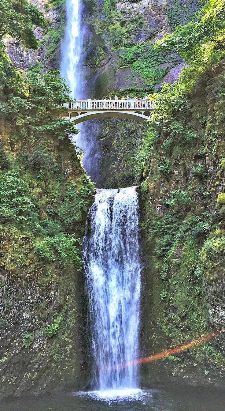 Best Pacific Northwest Oregon Washington Images On - 10 things to see and do in portland