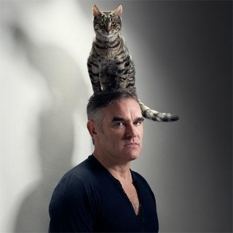 Catty: Cat People, Cat Hats, Happy Birthday, Morrissey, Famous People, Celebrity Cat, Cat Lovers, Famous Cat, Animal