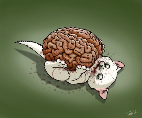 Zombie Kitty: not sure why but i find this super duper adorable