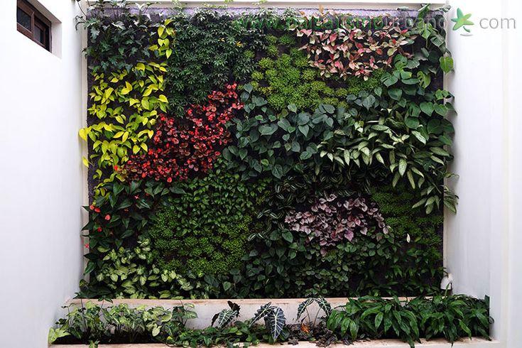 31 best jardines verticales en guatemala iglesia de for Pinterest jardines verticales