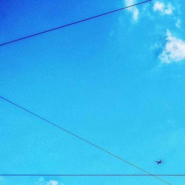 """lines #sky #clouds #togethigh #plane #blue #instamood #instagood #instadaily #vsco #vscocam #vscogood #snapseed #day #light #serenity #eternity #inspiration #kyiv #fly #goodmood #color #white #potd #420 #drugs #fun #lines"" by @intrometric. #ganpatibappamorya #dilsedesi #aboutlastnight #whatiwore #ganpati #ganeshutsav #ganpatibappa #indianfestival #celebrations #happiness #festivalfashion #festivalstyle #lookbook #pinksuit #anarkali #festivaloutfit #desigirl #nehamalik #model #actor #blogger…"