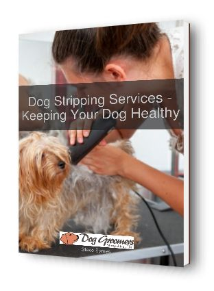 dog+stripping+services+ebook+cover+3d+image+http://doggroomersshrewsbury.co.uk/download/dog-stripping-services-keeping-dog-healthy/