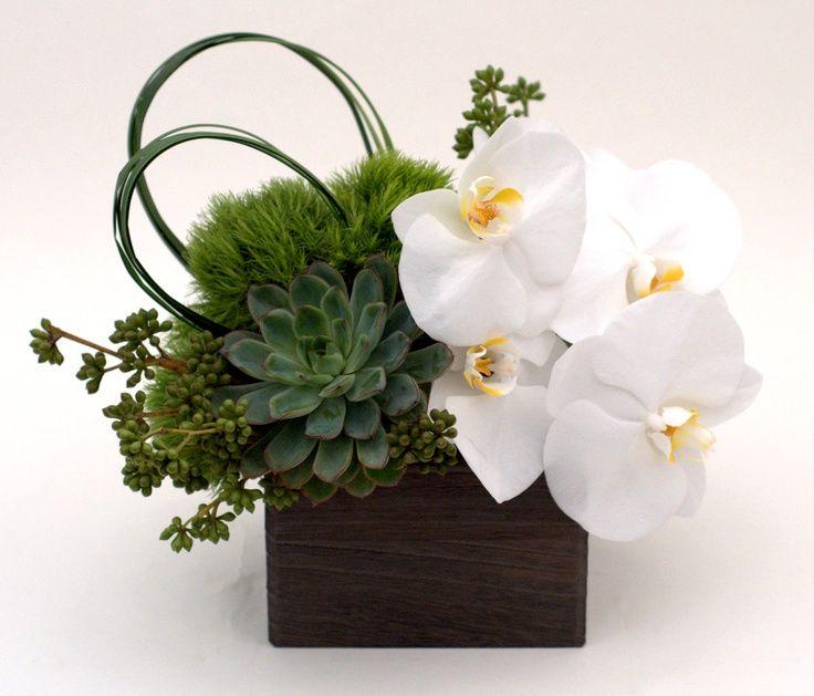 orchid arrangements modern - Google Search