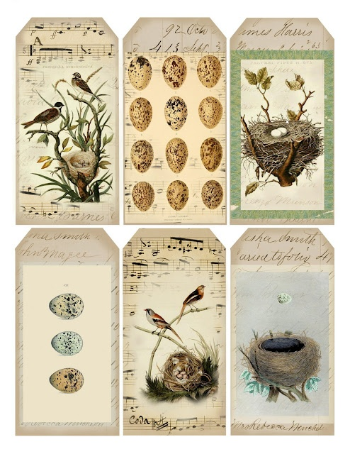 Vintage, bird-inspired tags ~ free printable