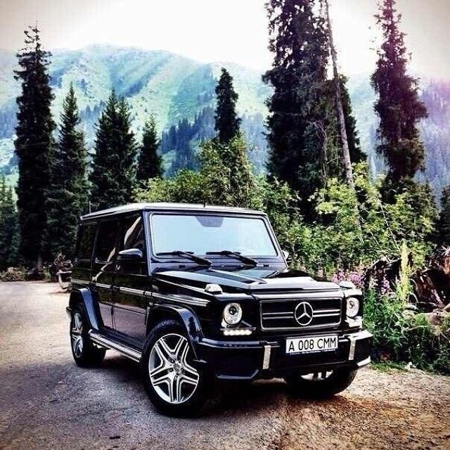 Easily the greatest vehicle ever created. The Mercedes-Benz G-Class.