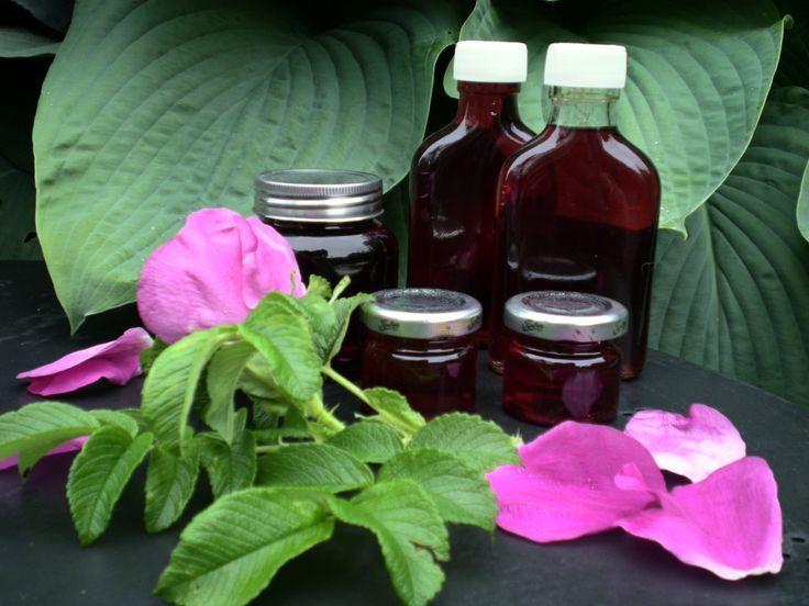 Rosensirup på hybenroser