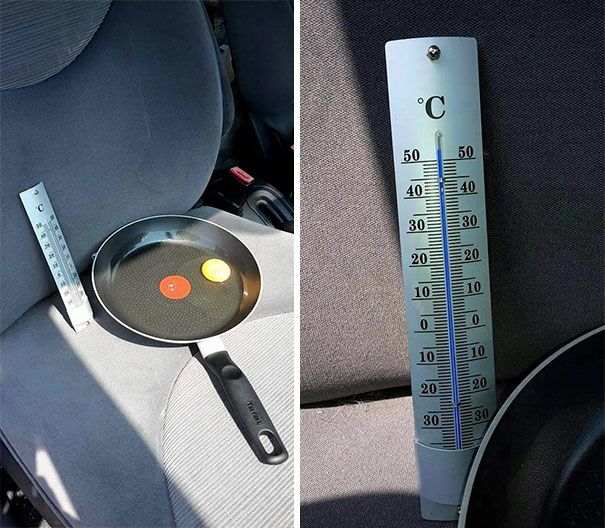 Guy Lets Egg In Car During Hot Day To Show What it Does to Your Dog