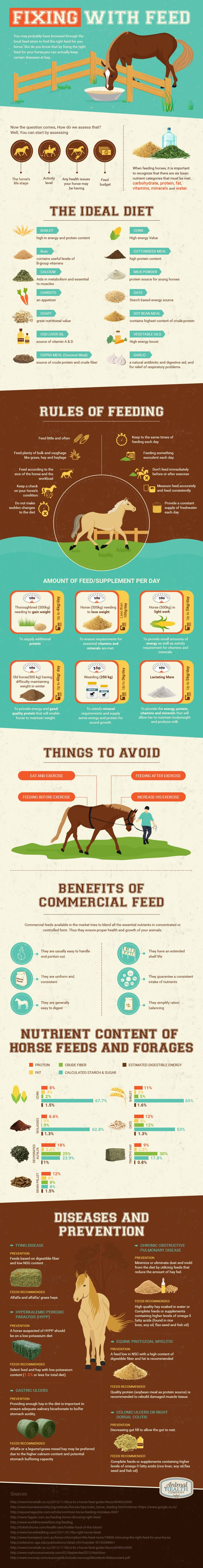 Special thank you to Sasha from Animal Health Company for the informative graphic below on horse nutrition!     *For informational and entertainment purposes only. Always consult a profes…