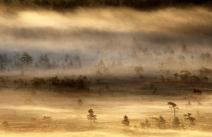 14.8.2015: From Misty Lands IV by Suensyan.deviantart.com on @DeviantArt