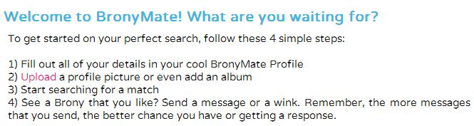 New Dating Website Launches For Bronies