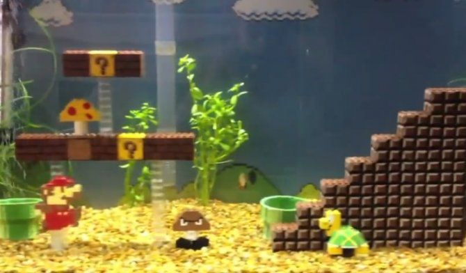 Fish tank ideas video super mario bros fish tank blog for Mario fish tank
