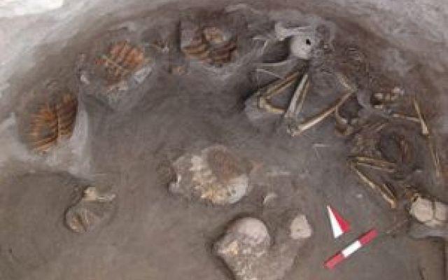Turchia: trovati gusci di tartarughe in una tomba E' stata scoperta qualche settimana fa in Turchia, vicino ad una sponda del Tigri, una tomba con dentro i resti di una donna e un bambino (o bambina). I due corpi avevano sparsi tutt'intorno 17 gusci #tartarughe #tombe #turchia