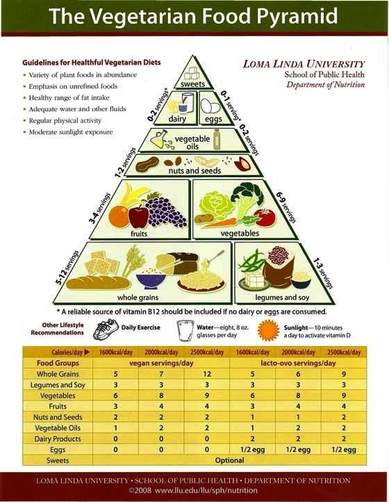 Vegetarian Food Pyramid vegetarian