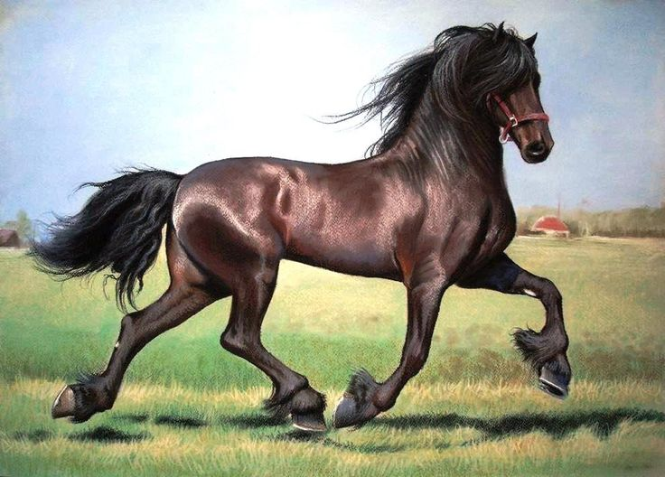 Trotting Liver Chestnut Friesian Horse Art Caballo